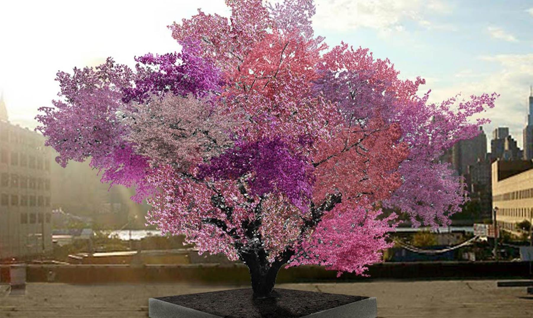 """El árbol """"Frankenstein"""" donde crecen más de 40 tipos de frutas"""